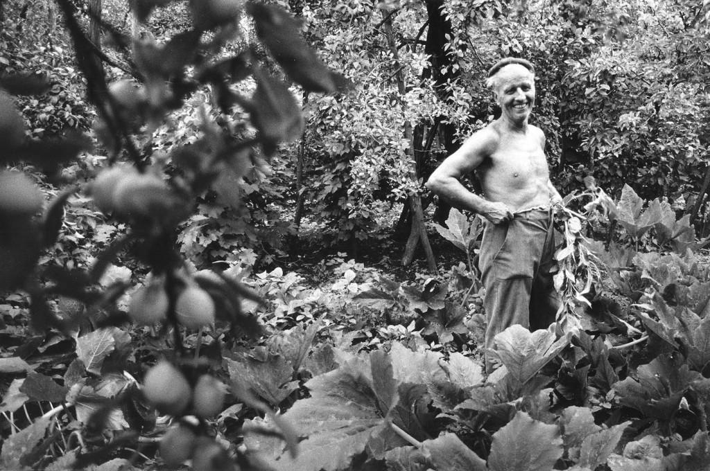 András Skarbit in seinem Garten in Tiszaeszlár