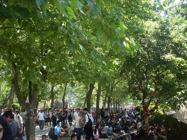 Gezi-Park Juni 2013