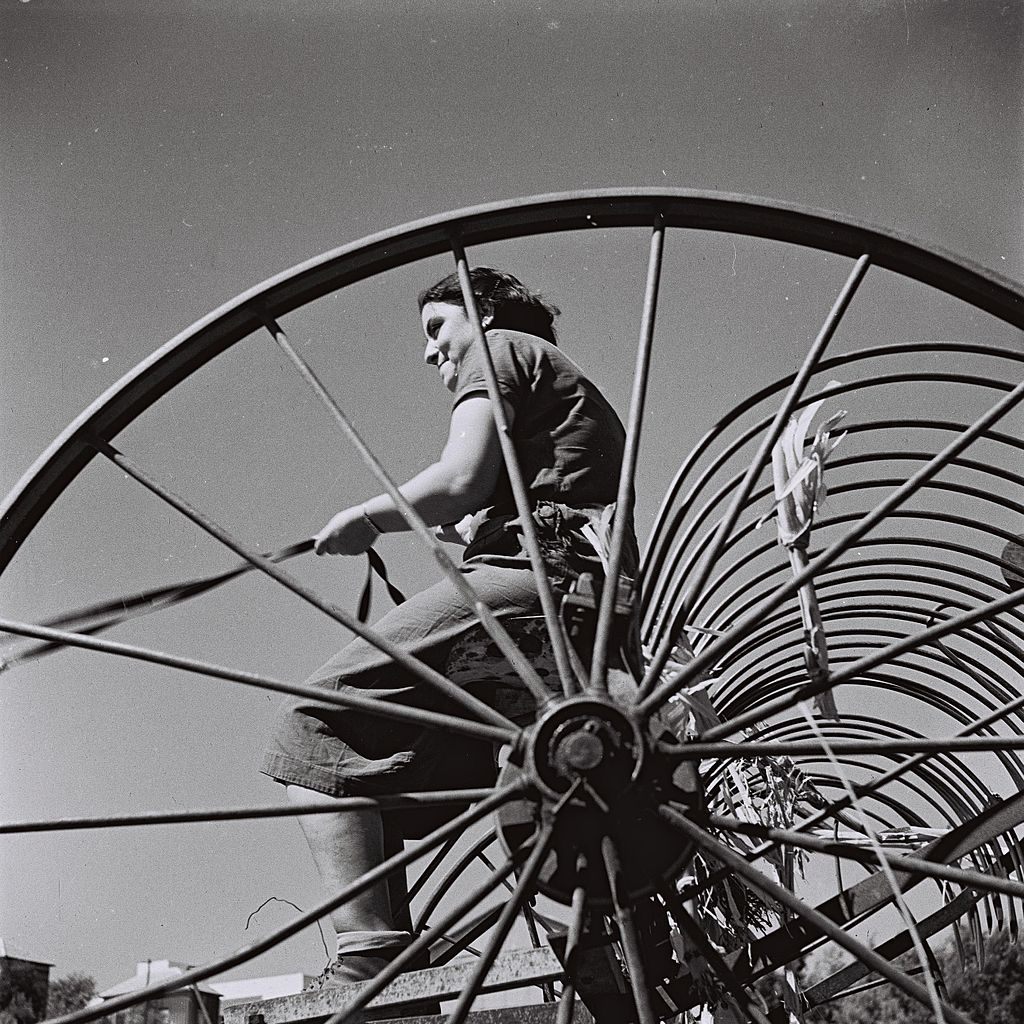Zoltan Kluger (Foto): Rivka driving the hay rake at Kibbutz Maabarot. Government Press Office, 01.10.1940 Quelle: http://www.flickr.com/photos/government_press_office/7535055888/ Lizenz: CC BY-SA 3.0