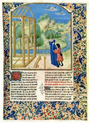 Pier de Crescenzi, Livre des prouffitz champestres et ruraulx, ca. 1480. Quelle: Wikimedia Commons https://commons.wikimedia.org/wiki/File:Profits_champetres_11.jpg, gemeinfrei