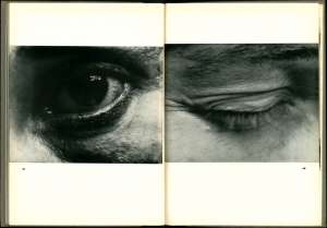Das Fotobuch der Weimarer Republik als Schule des Sehens